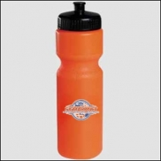 Journey 28 oz. Bike Sports Bottle - Push Pull Cap (Colors)
